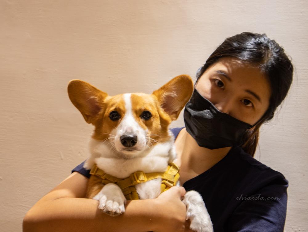 製餃研所 店狗