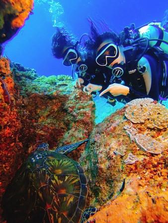 海子Ocean Rover